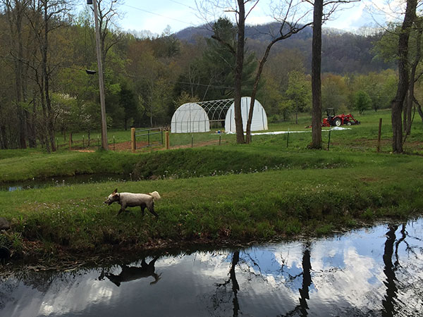 hoop house being put up
