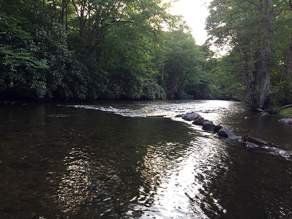 The river at WSF